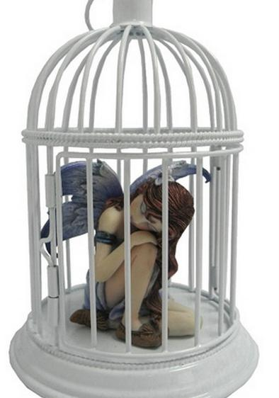 fairy in a bird cage