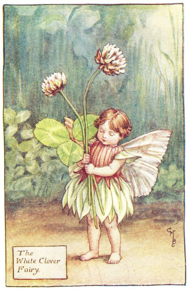 Don't Steal Fairy Flowers! (Powys)