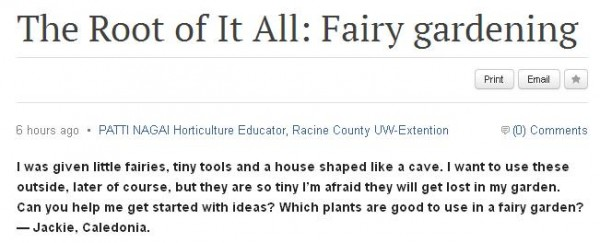 root of it all fairy gardening