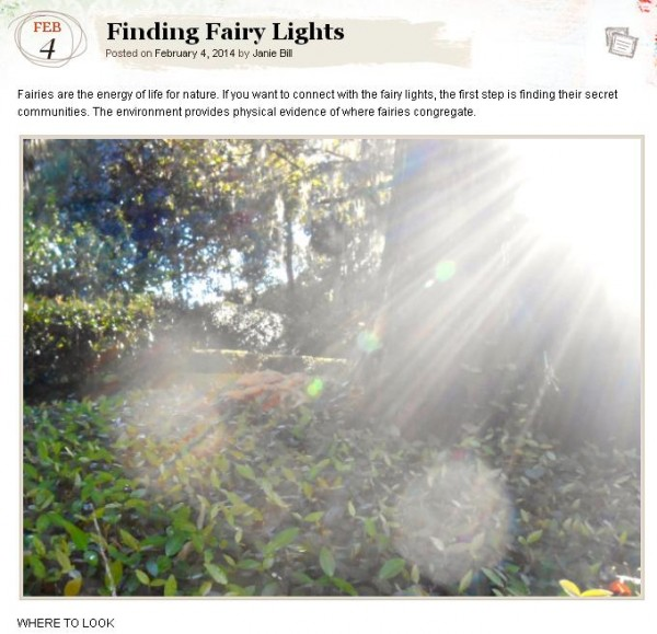 finding fairy lights