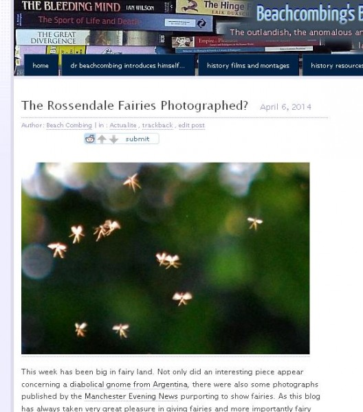 rossendale fairies sceptical